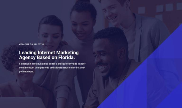 Leading Internet Marketing
